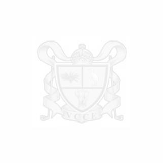 logo watermark 2