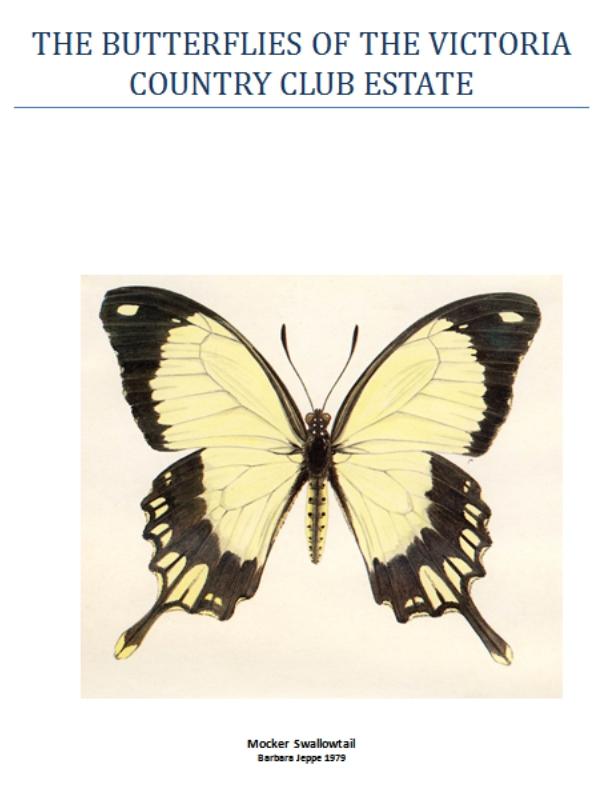 butterflies-vcce